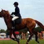 horse-ride4